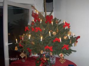 2011-15-12-Weihnachtsfeier